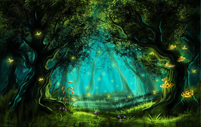 forest, light, stars, environmental