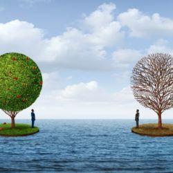 trees, prosperity