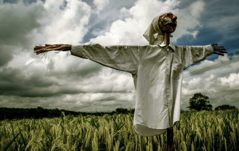 strawman, farm, scarecrow